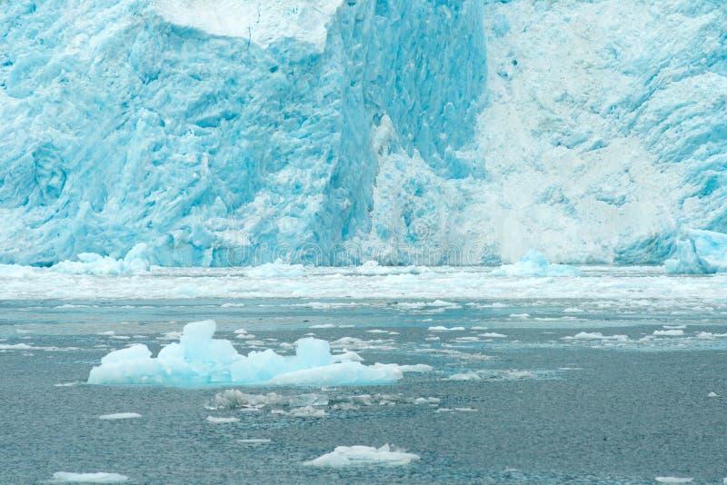 Побережье Аляски Тихого океана подачи ледникового льда Aialik стоковое фото rf