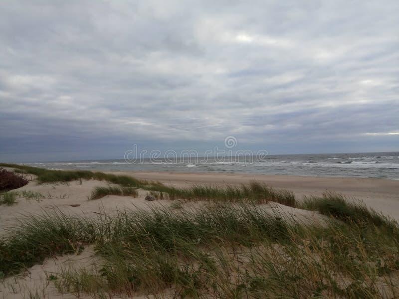 Побережье Балтийского моря на пасмурный летний день стоковая фотография rf