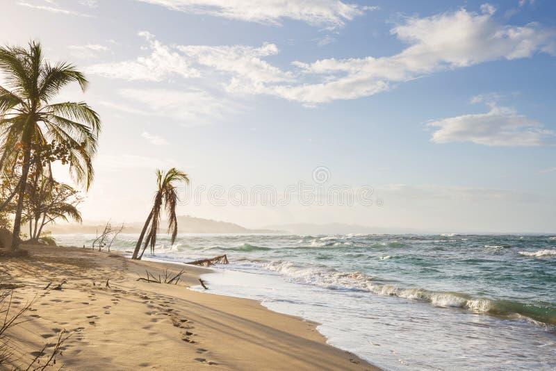Побережье в Коста-Рика стоковые изображения rf