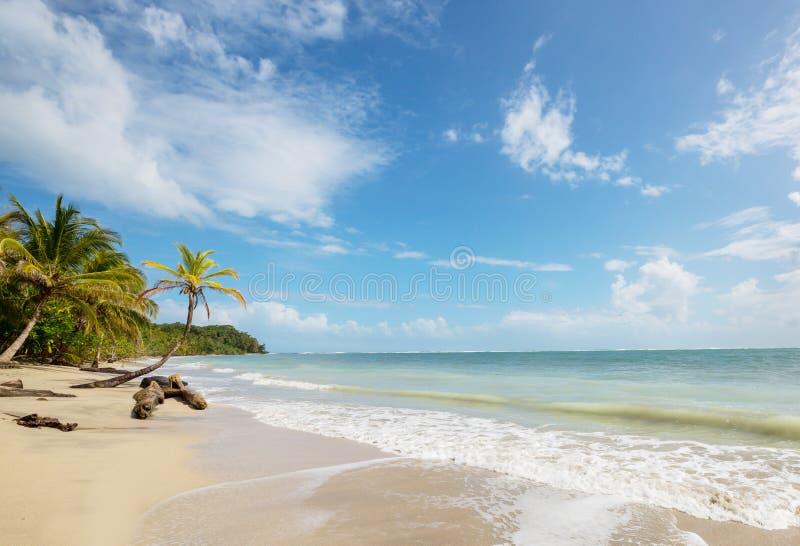 Побережье в Коста-Рика стоковое изображение rf