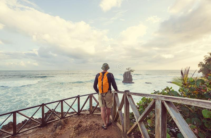 Побережье в Коста-Рика стоковые фотографии rf