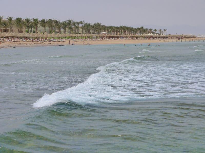Побережье Красного Моря в Sharm El Sheikh стоковые фотографии rf