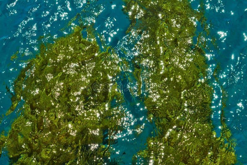 Побережье Красного Моря стоковая фотография