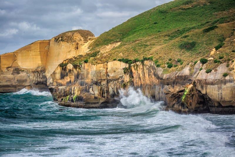 Побережье Новой Зеландии стоковые изображения