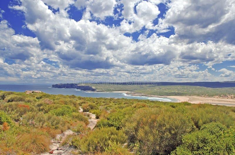 Побережье около королевского национального парка, Австралии стоковое изображение rf