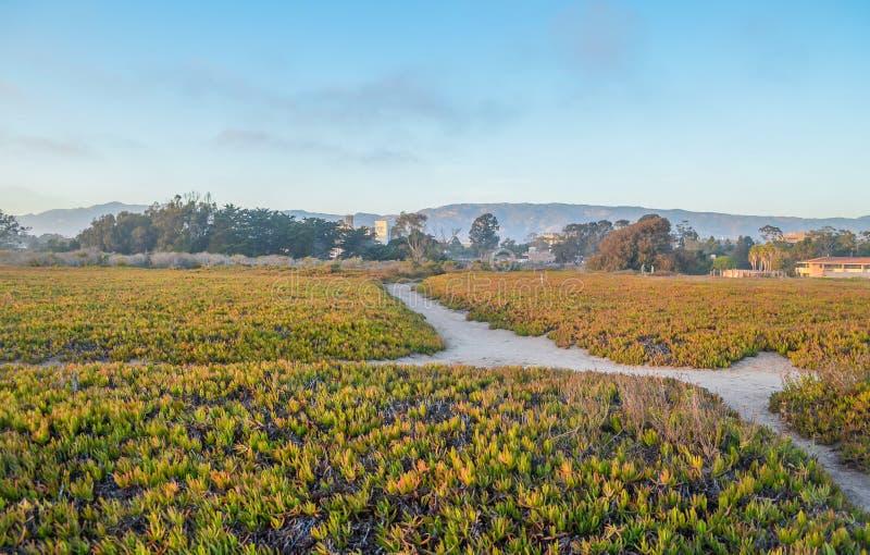 Побережье Санта-Барбара, Калифорния стоковые изображения