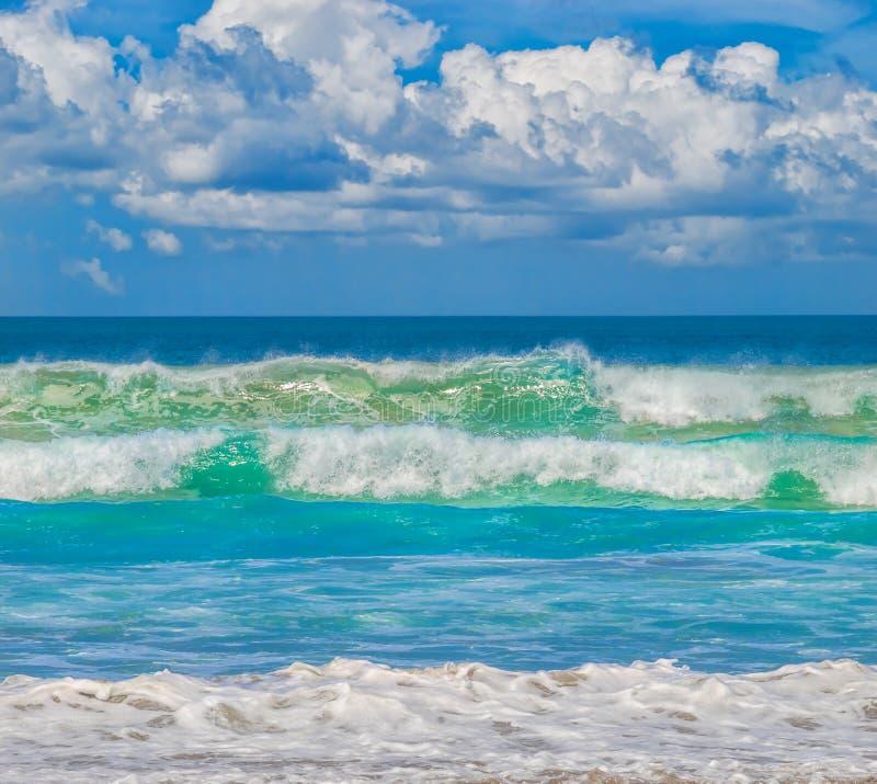 Побережье Тихого океана развевает предпосылка стоковое фото rf