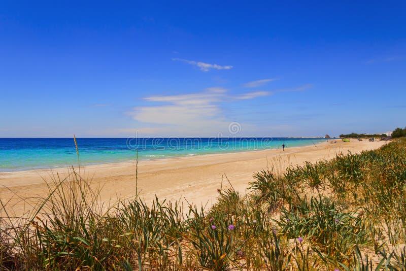 Побережье Salento ЛЕТА: Пляж Pescoluse (Lecce) Италия (Apulia) стоковое изображение rf