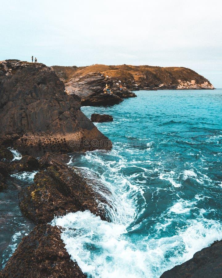 Побережье Sandy красивого моря с ясным голубым небом и солнечным светом стоковая фотография rf