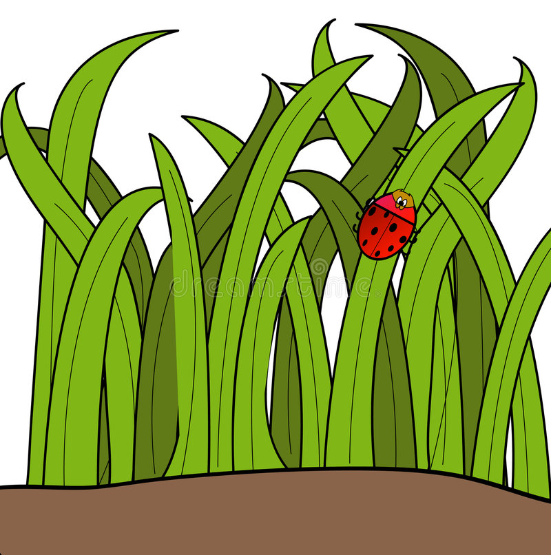 повелительница травы черепашки бесплатная иллюстрация