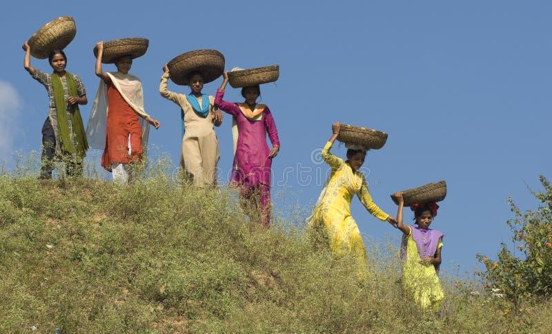 повелительницы корзины стоковая фотография rf