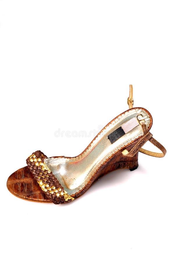 повелительницы обуви стоковые изображения rf