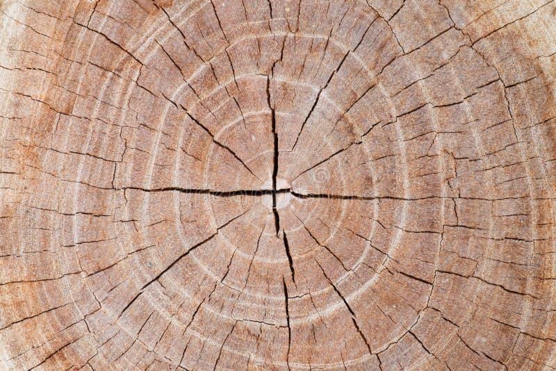 Поверхностная предпосылка текстуры старой древесины для дизайна стоковая фотография rf