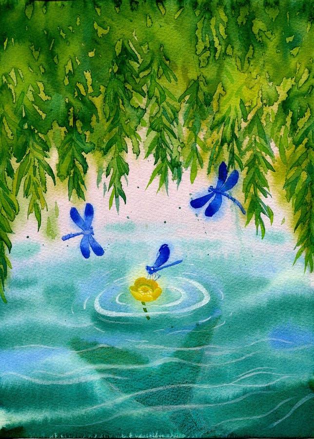 Поверхность большой вербы leaved надводная при желтый мор-мак перемещаясь на волны, голубые dragonflyes летая и tait i mermaind иллюстрация штока
