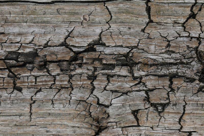 Поверхность выветренная к время, старая деревянная предпосылка текстура стоковое фото