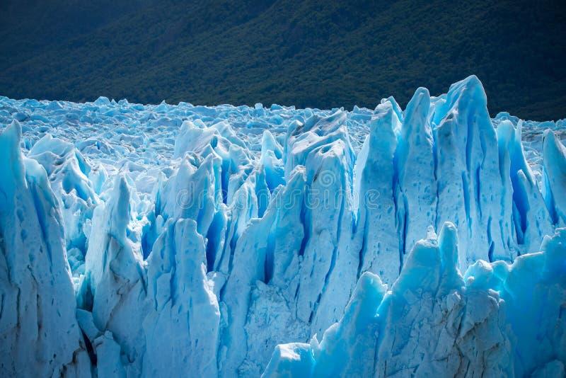 Поверхность голубых ледников на предпосылке леса Shevelev стоковое фото rf