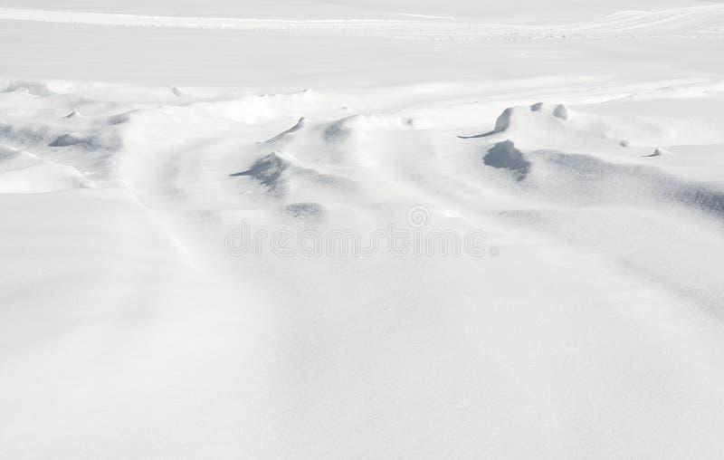Поверхность земли с новым падением снега стоковое фото