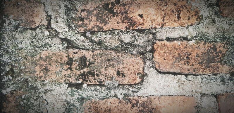 Поверхность искусства или абстрактной грязной кирпичной стены стоковая фотография