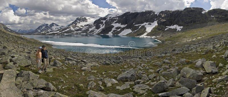 поверхность Норвегии озера малышей floes стоковые фото