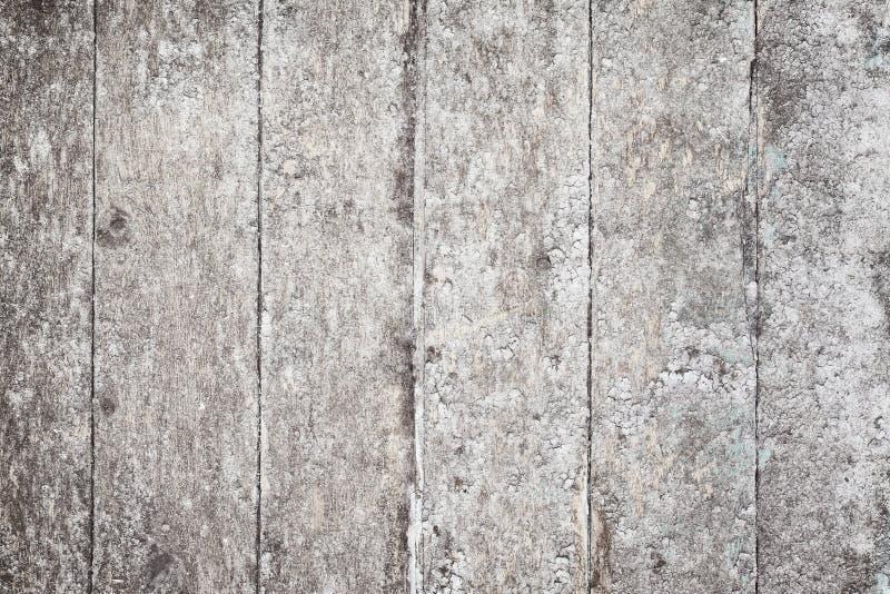 поверхность пятен грибного grunge сельская деревянная стоковое изображение rf