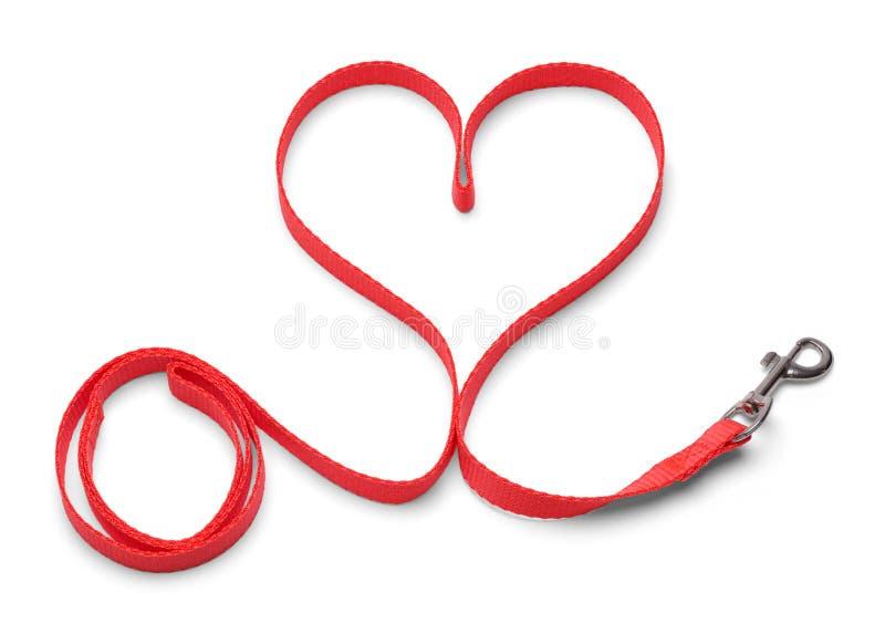 Поводок собаки сердца стоковое изображение