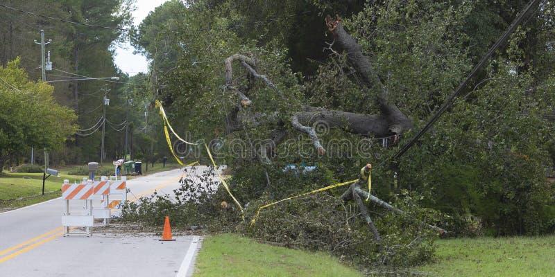 Повреждение Флоренса урагана к линиям электропередач в Wagram северном Carolin стоковая фотография rf