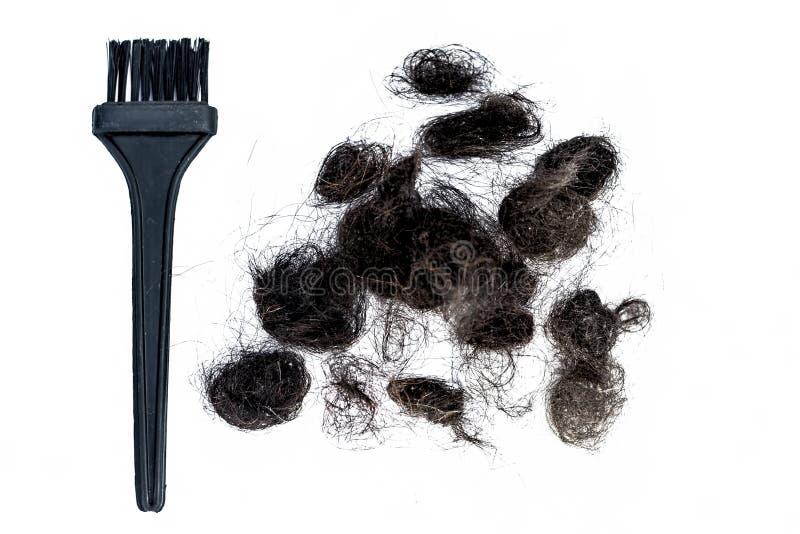 Поврежденные волосы изолированные на белизне с концепцией щетки волос умирая волос стоковое изображение rf