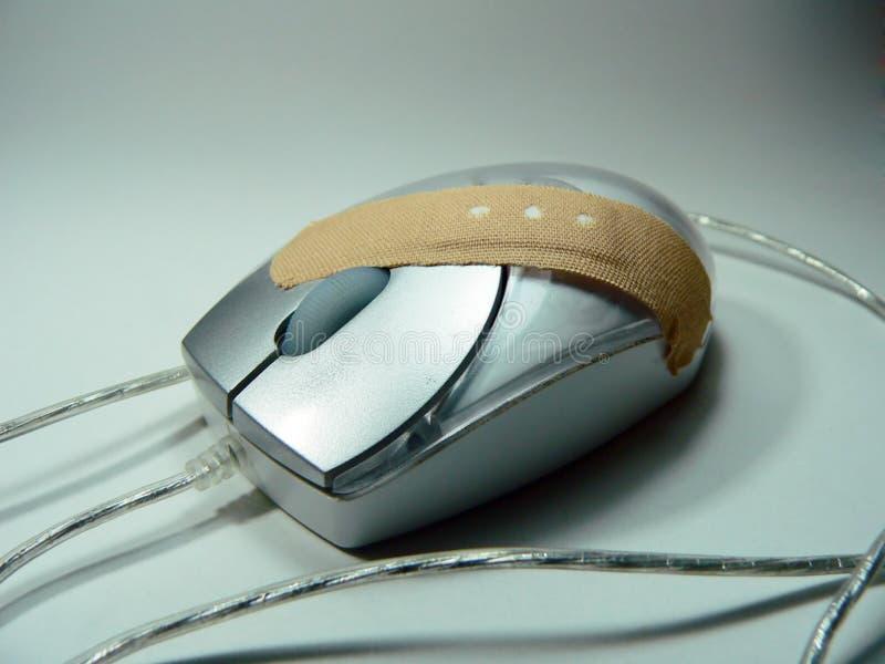 поврежденные мыши стоковое фото