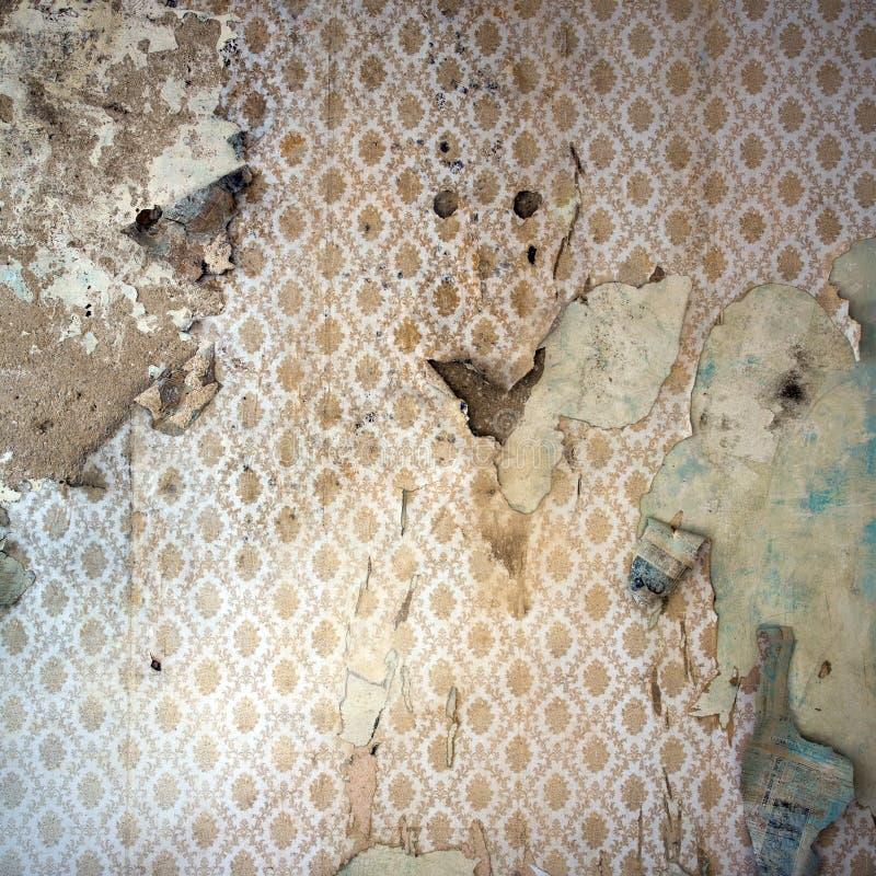 повреждено слезающ wal обои стоковая фотография