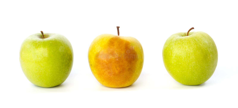 Повреженное яблоко между 2 здоровыми яблоками стоковое изображение
