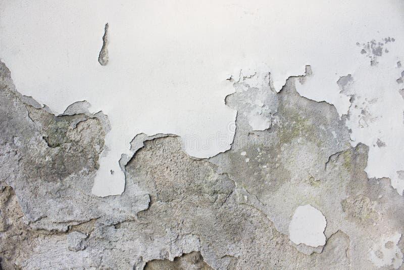 Поврежденная старая стена с белой краской стоковые фото