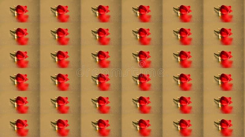 Повторенный поднял на бежевую текстуру стоковая фотография rf