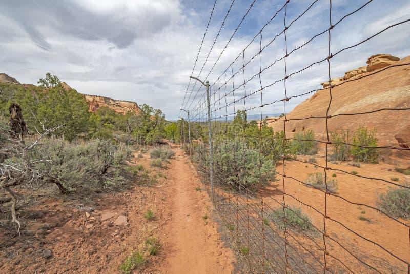 Пограничный забор в глуши стоковое фото rf