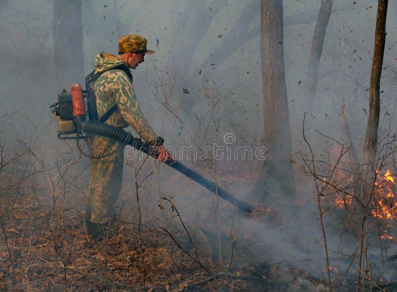 подавление пущи 5 пожаров стоковое изображение rf
