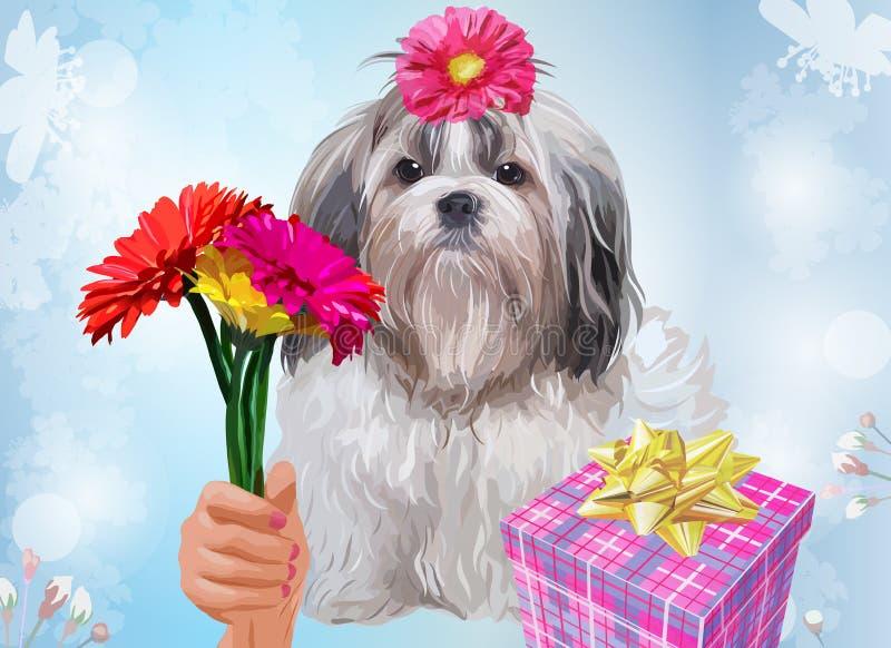 Подарок собаки tzu Shih иллюстрация вектора
