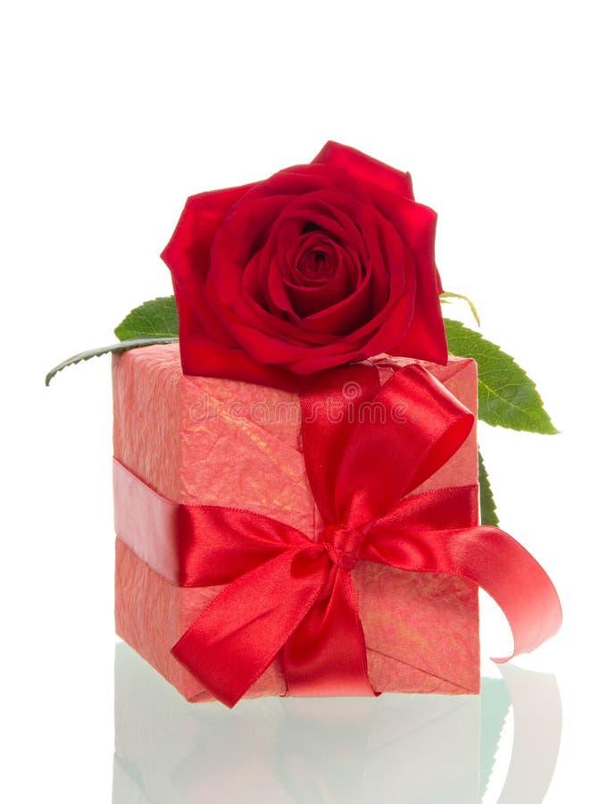 Подарочная коробка с лентой и роза изолированная на белизне стоковое изображение