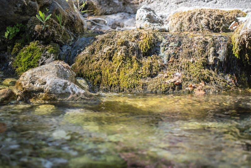 Подача воды природного источника стоковые фото