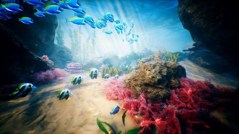 Подводные океанские волны и тропические рыбы иллюстрация штока