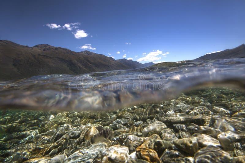 Подводный взгляд на wea  озера HÄ, Новой Зеландии стоковые изображения
