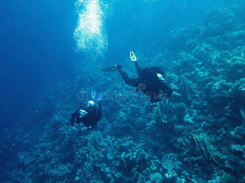 Подводный водолаз пока ныряющ стоковое изображение
