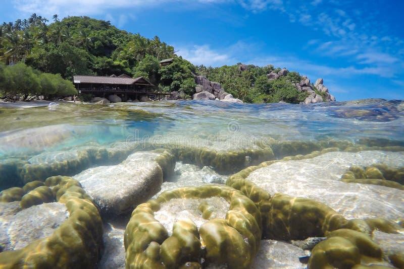 Подводный и поверхностный взгляд с красочным коралловым рифом с стоковое фото
