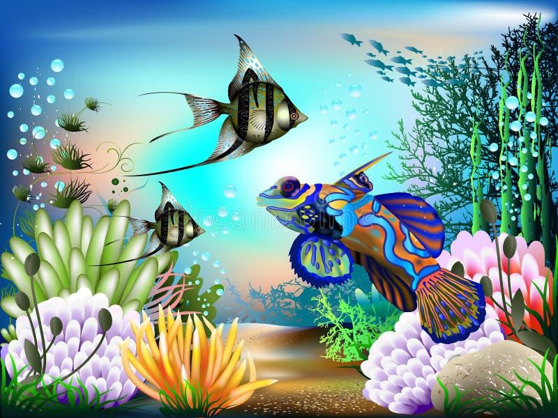 подводный мир иллюстрация вектора