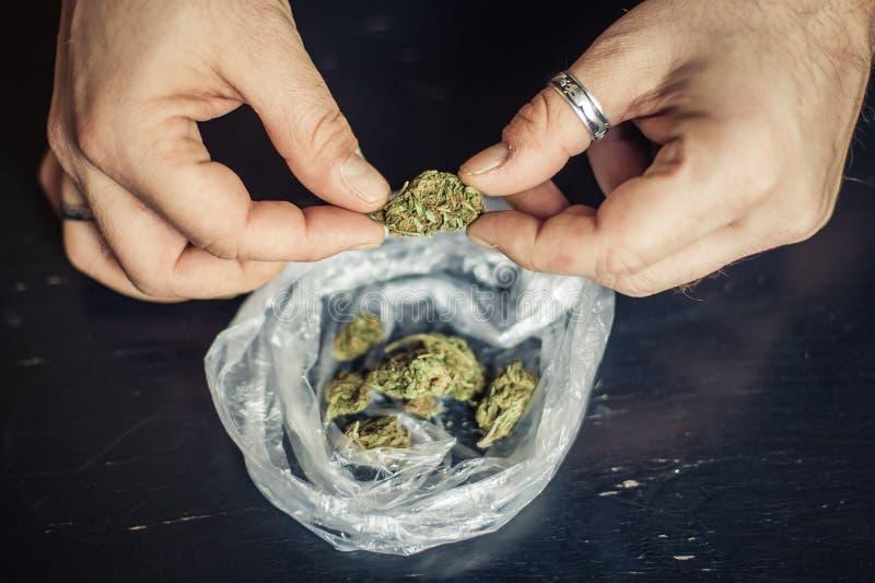 Подготавливать соединение конопли марихуаны Дает наркотики наркотической концепции стоковое изображение rf
