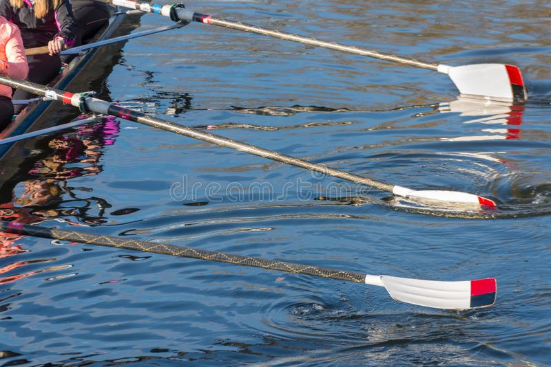 Подготовка для большой гонки регаты pre стоковая фотография rf