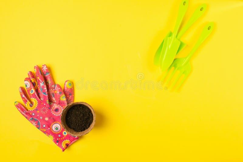 Подготовка на весна для трансплантируя заводов Бак, лопаткоулавливатель, предпосылка signets яркая желтая Концепция весны стоковое изображение