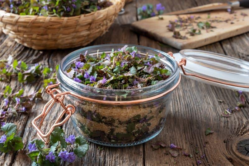 Подготовка сиропа земл-плюща травяного против кашля стоковые фото