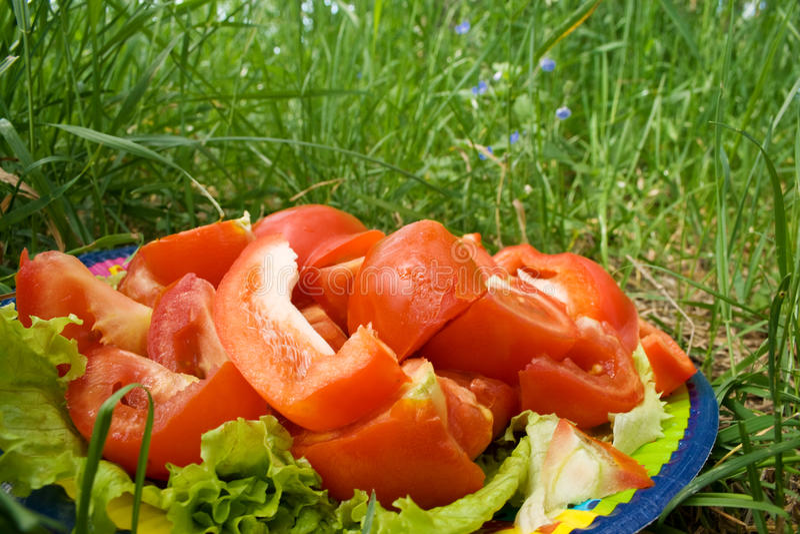 подготовленные овощи стоковые изображения rf