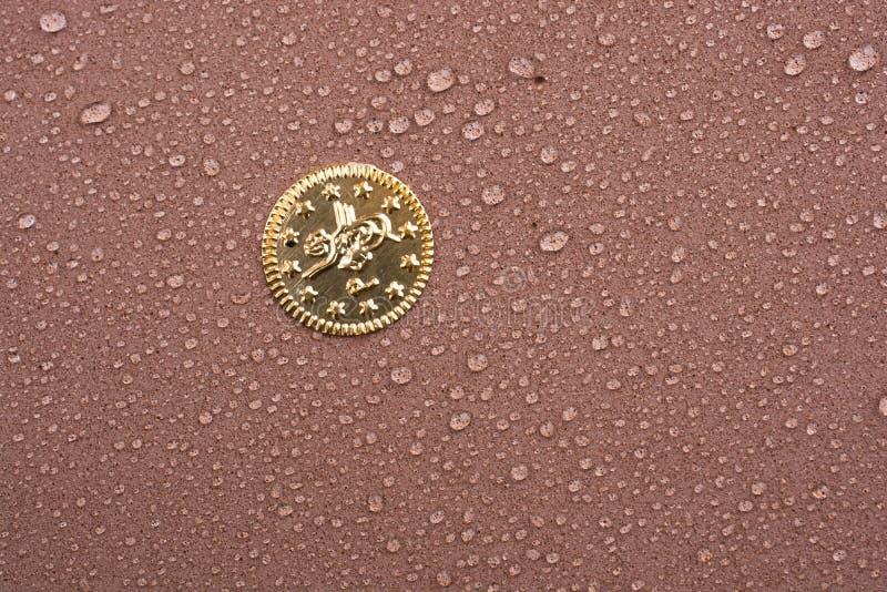 Поддельная золотая монетка предусматриванная с падением воды стоковое фото rf