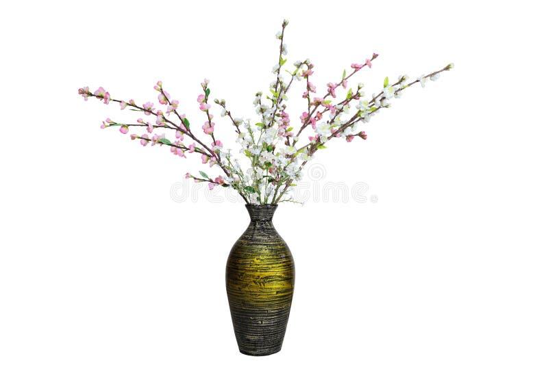 Поддельный вишневый цвет стоковая фотография rf