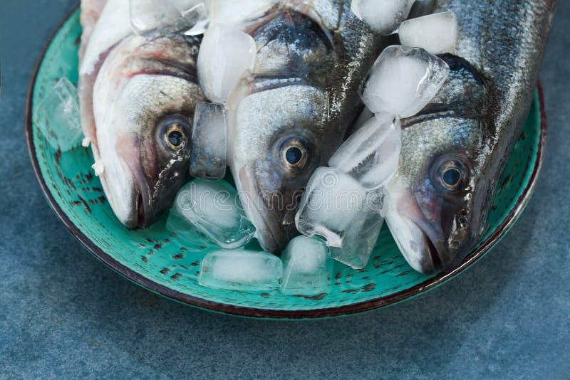 Подлинные натуральные продукты Delishes рыб итальянские на плите стоковое фото